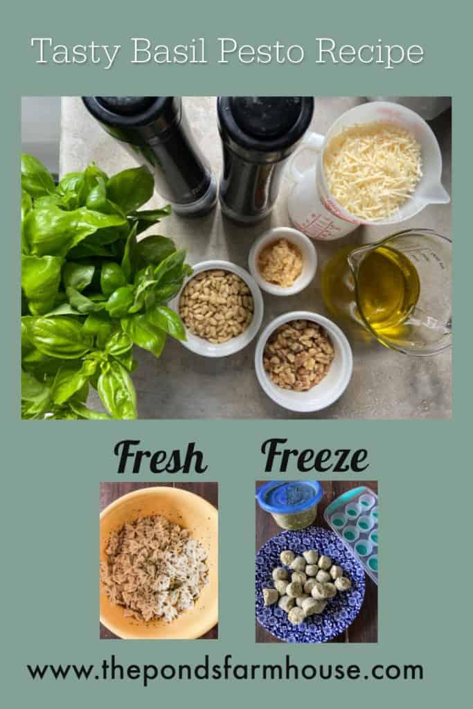 Basil Pesto Recipe to use fresh or freeze for future use.  Pesto dipping oil, Basil Pesto Pasta, #basilpesto